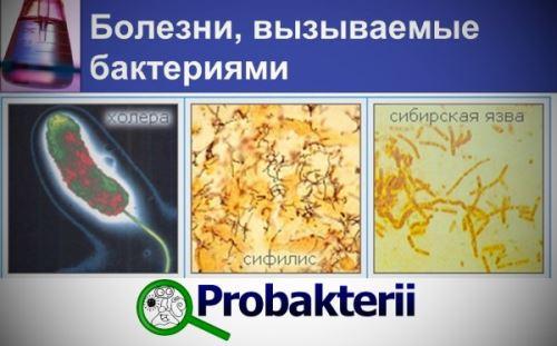 профилактика паразитов у человека