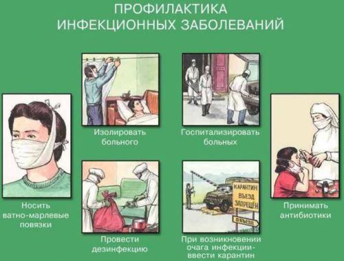 профилактика паразитов у человека лекарства