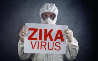 Вирус Зика: особенности, эпидемиология и профилактика заражения