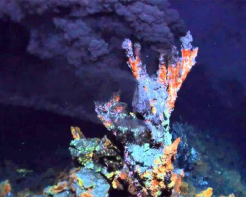 Искусственно созданный микроорганизм не подтвердил теории происхождения бактерий и архей
