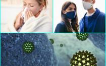 Сколько времени длится вирусная инфекция, что влияет на продолжительность инкубационного периода и длительность заболевания