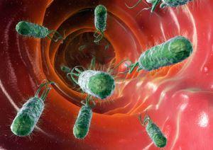 аллергены бактерий применяют с диагностической целью