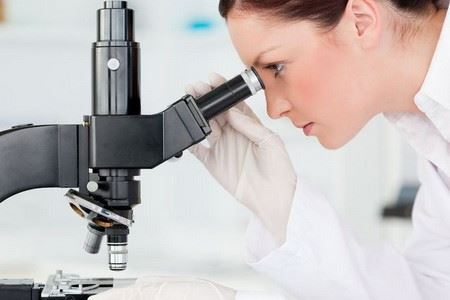 analiz mochi bakterii