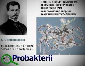 С.Н. Виноградский