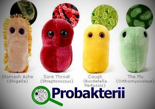 Милые бактерии