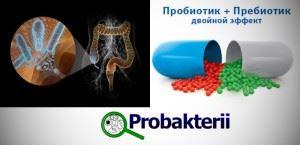 Пробиотики и пребиотики, содержащие лакто- и бифидобактерии