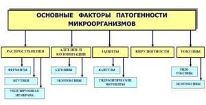 Факторы патогенности микроорганизмов
