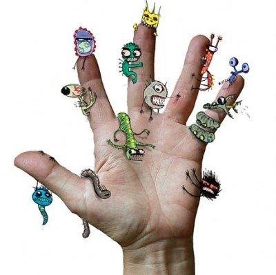 Бактерии на руках человека