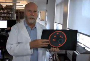 Крейг Вентер (Craig Venter)