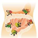 Вредные микробы в кишечнике