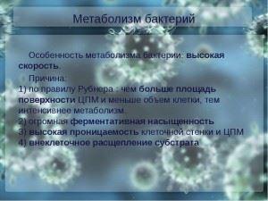 метаболизм бактериальной клетки