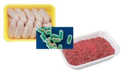 бактерии в продуктах